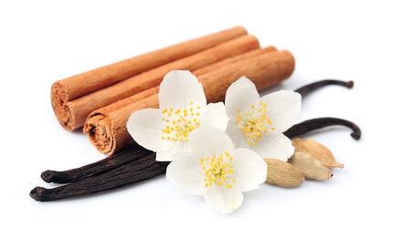 Selina Wamucii Kenya Cinnamon