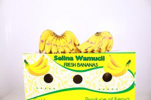 Kenya Bananas : Your Reliable Suppliers & Exporting Company