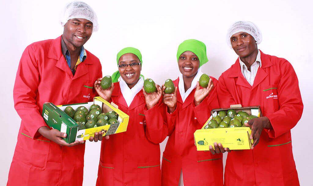 Kenya-Avocados-Selina-Wamucii