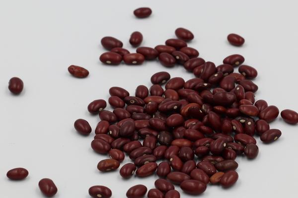 Tanzania Kidney Beans
