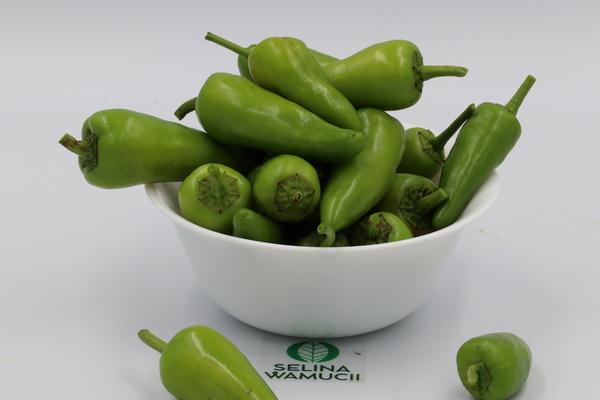 Malawi chilli