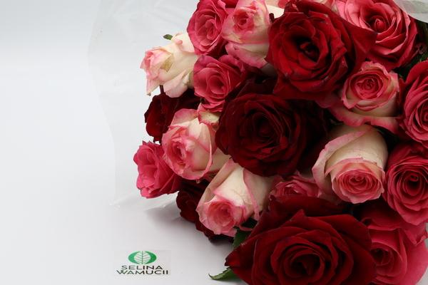 Ethiopia Fresh Cut Roses