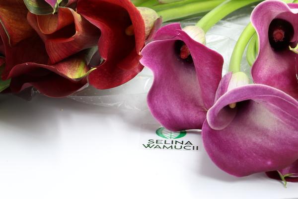 Kenya Lilies